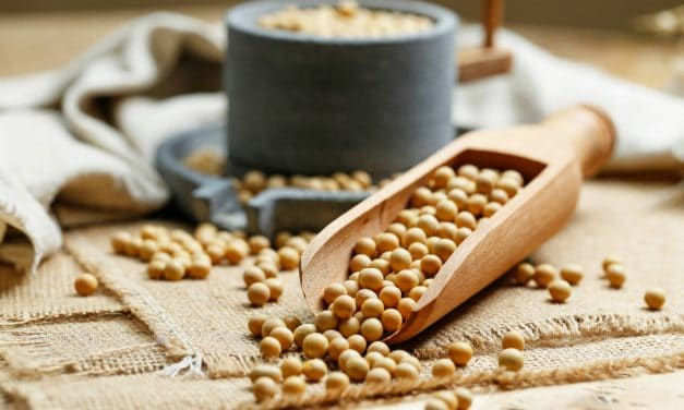 Soy Allergy? Here are Some Foods to Eat on a Soy Free Diet