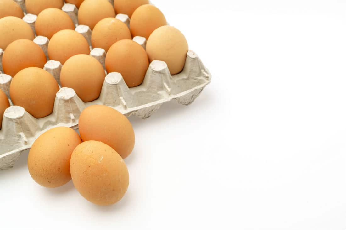 egg nutrition and health benefits of eggs