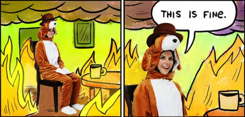 This is Fine Dog Meme Halloween Costume