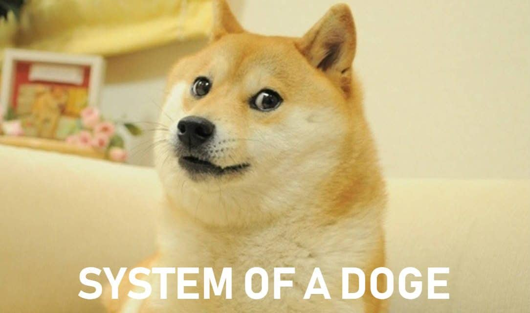 Doge Meme – Things You Should Know About