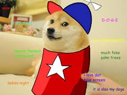 doge such wow much fun meme