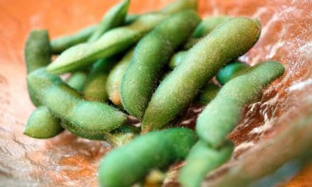 11 Scientific Edamame Health Benefits along with Nutrition Facts