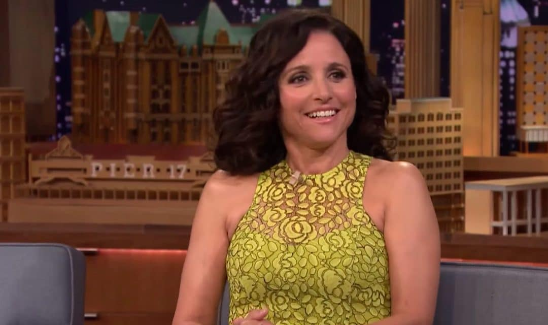 The Billionaire Successor: Julia Louis Dreyfus Net Worth