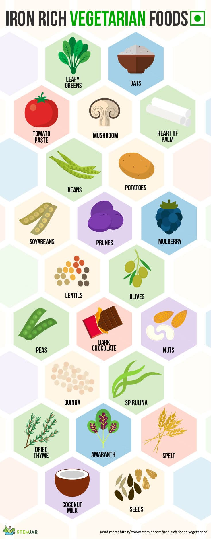 Iron rich vegetarian food infographic
