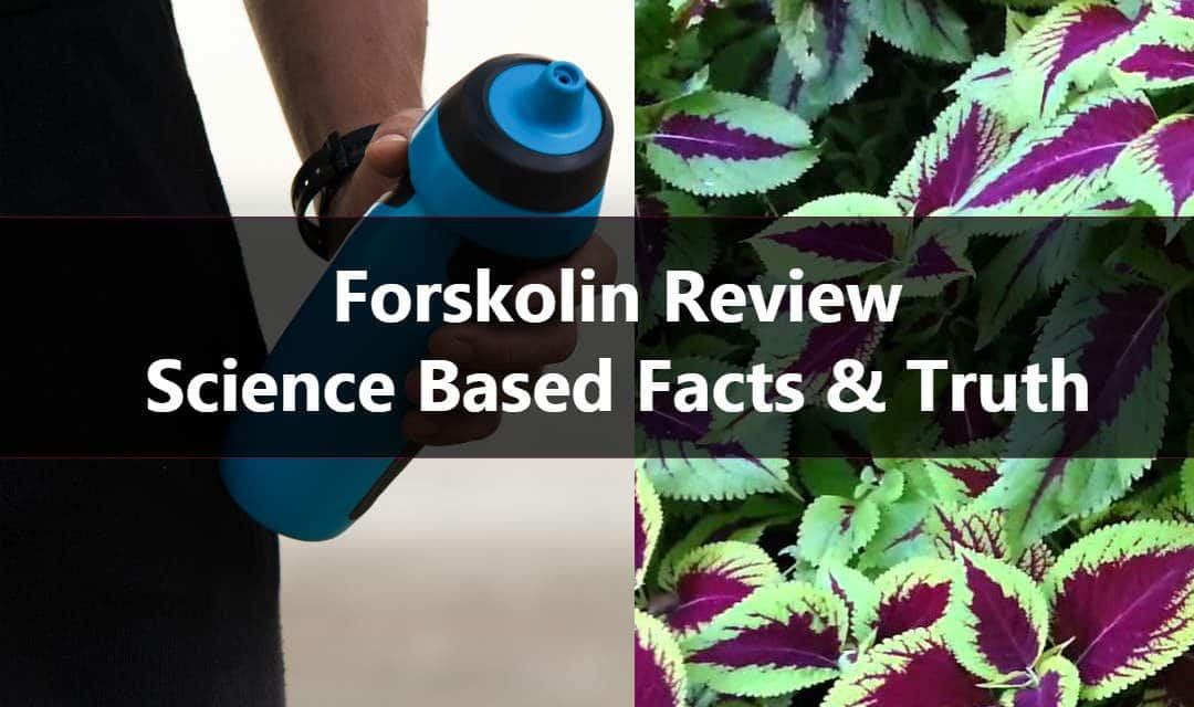 Science Based Forskolin Reviews – Does it Really Work?