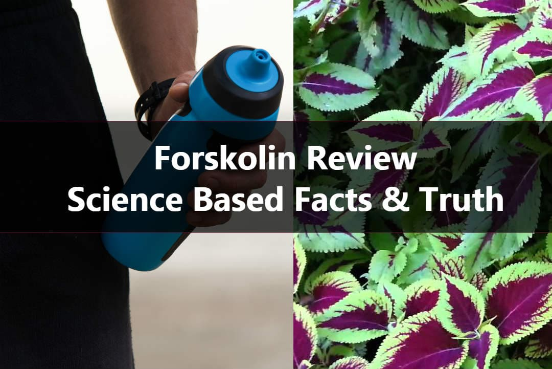 forskolin reviews on weight reduction