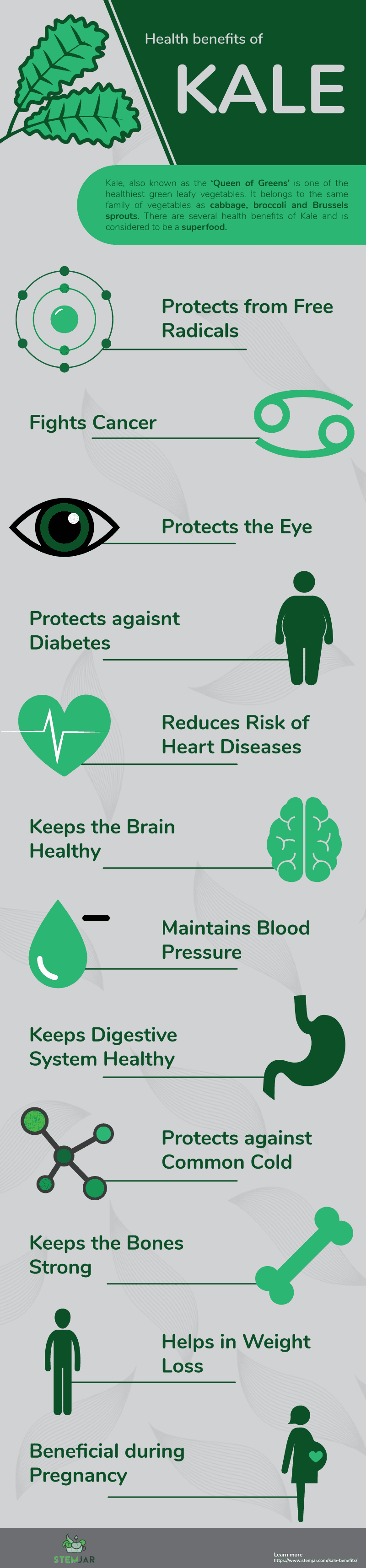 kale benefits info graphic
