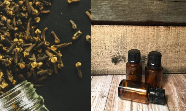 Efficacy of Clove Oil for Toothache – What is the Truth?