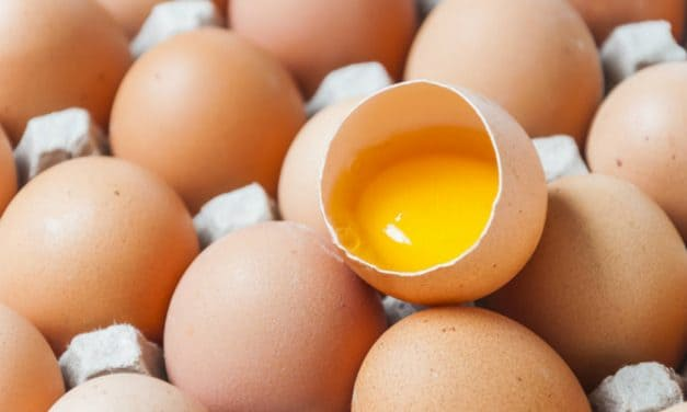 How to Tell If Eggs are Good to Eat or Not?