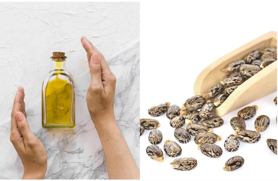 10 Top Health Benefits of Castor Oil, Uses, and Precautions