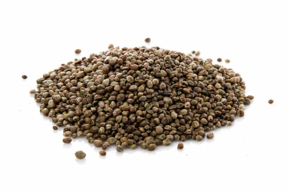 There are several hemp seeds benefits such as it can improve digestion, alleviate symptoms of allergy, maintain hormonal balance, etc.