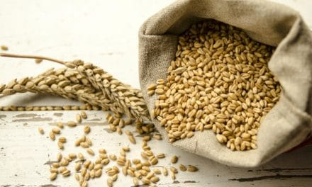 What is Farro? It's Nutrition Facts, Health Benefits & Side Effects