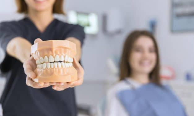 Do You Know Different Types of Teeth in Your Mouth?