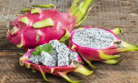 10 Top Benefits for Adding Dragon Fruit to Your Diet