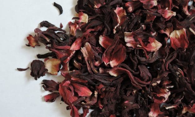 Top 10 Benefits of Hibiscus Tea & Its Side Effects