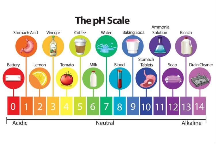 What Causes pH Imbalance? 5 Ways to Achieve Proper pH Balance