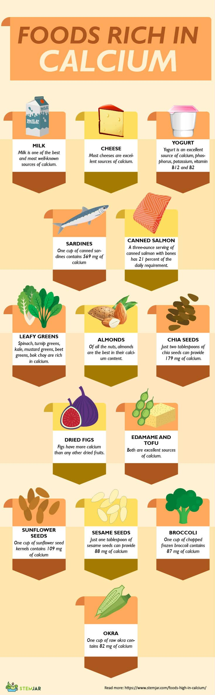 Calcium rich foods infographic