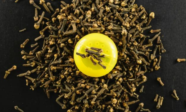 12 Health Benefits of Clove Oil and Its Side Effects