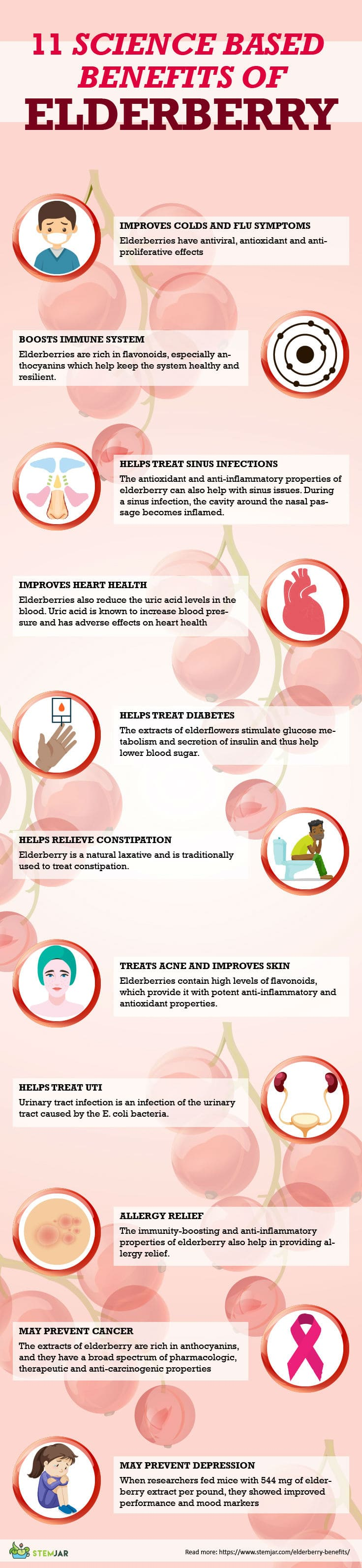 elderberry benefits infographic