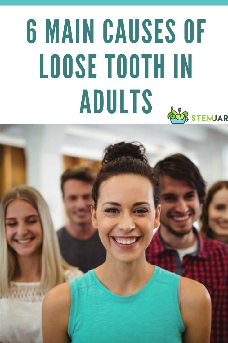 Loosening of teeth is caused by a disease of the periodontium which includes the tissues surrounding the teeth. These tissues are the gingiva, the underlying bone and fibrous attachments that hold them together.