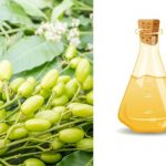 6 Impressive Neem Oil Uses and Benefits