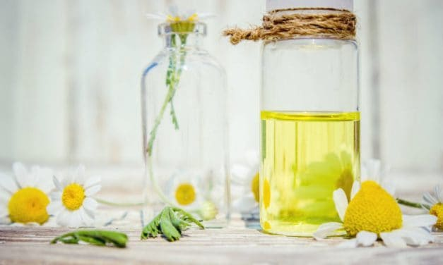 10 Useful Roman Chamomile Essential Oil Benefits & Its Uses